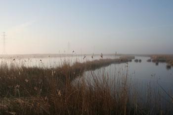 Westerkwartier, omgeving Leek